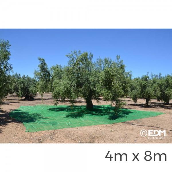 Manto para recoleccion verde aceituna 4x8m